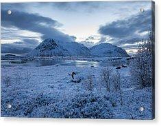 Arctic Morning Acrylic Print