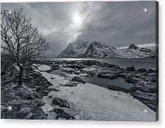 Arctic Spring  Acrylic Print