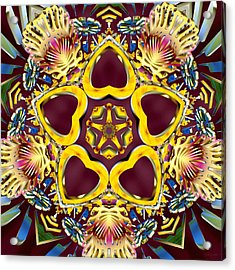 Arcturian Starseed Acrylic Print by Derek Gedney