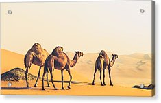 Are We Lost  Acrylic Print by Ahmed Rashed
