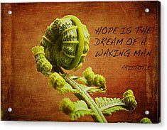 Aristotle Quote Acrylic Print