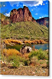 Arizona At Its' Best Acrylic Print by Marilyn Smith