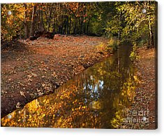 Arizona Autumn Reflections Acrylic Print