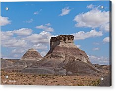 Acrylic Print featuring the photograph Arizona Desert And Mesa by Jeff Goulden