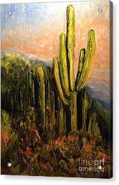 Arizona Desert Blooms Acrylic Print
