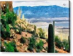 Arizona Desert Heights Acrylic Print