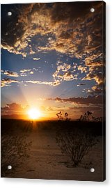 Acrylic Print featuring the photograph Arizona Desert Sunset by Brad Brizek