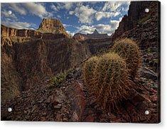 Arizona Morning Acrylic Print by Kiril Kirkov
