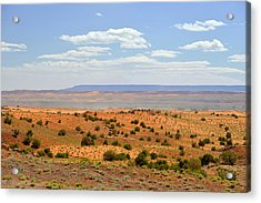 Arizona Near Canyon De Chelly Acrylic Print by Christine Till