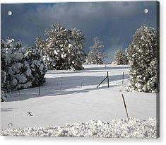 Arizona Snow 3 Acrylic Print