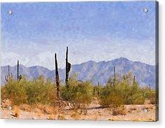 Arizona Sonoran Desert Acrylic Print by Betty LaRue