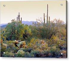 Arizona Spirit Acrylic Print