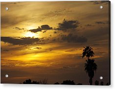 Arizona Sunset Acrylic Print by David Rizzo