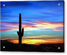 Arizona Sunset Saguaro National Park Acrylic Print
