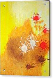 Arizona Acrylic Print by Valerie Howell