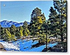 Arizona Winter Acrylic Print