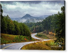 Arkansas Logging Road  Acrylic Print