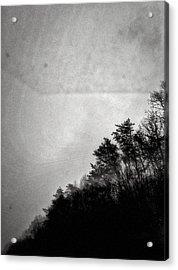 Arkansas Trees Acrylic Print by H James Hoff