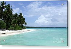 Acrylic Print featuring the photograph Arno Island by Andrea Anderegg