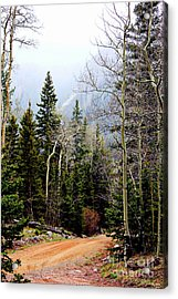 Around The Bend Acrylic Print by Barbara Chichester