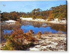 Around The Pond Acrylic Print by Robert Pilkington