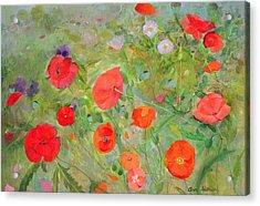 Arpeggiando Acrylic Print by Ann Patrick