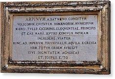 Arpinium Acrylic Print