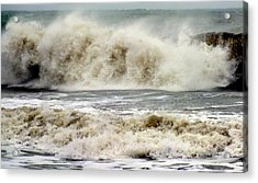 Arrival Of Sandy Acrylic Print by Karen Wiles