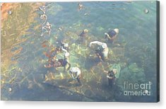 Art In Sea Acrylic Print