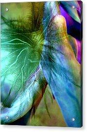 Art Of Deception Acrylic Print by Shirley Sirois