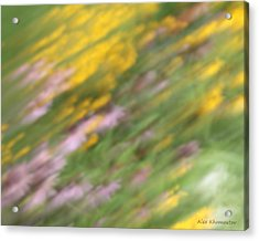 Art Of Floral Movement Abstract - Dancing Healing Flowers - Echinacea And Yellow Coneflowers Acrylic Print by Alex Khomoutov