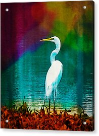 Art Of The Egret Acrylic Print by Frank Bright
