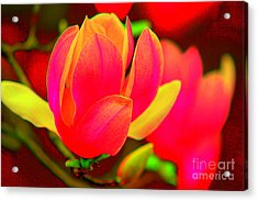 Artdeco Flower Acrylic Print