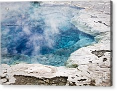 Artemisia Geyser Acrylic Print
