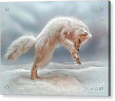Artic White Wolf Acrylic Print by Joan  Minchak