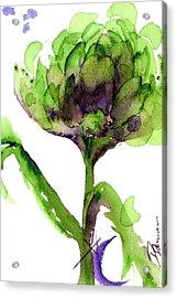 Artichoke Acrylic Print by Dawn Derman