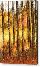 Artistic Fall Forest Abstract Acrylic Print