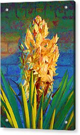 Artistic Yellow Yucca Acrylic Print by Linda Phelps