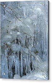 Artistry In Ice 9 Acrylic Print
