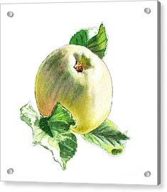 Acrylic Print featuring the painting Artz Vitamins Series A Happy Green Apple by Irina Sztukowski
