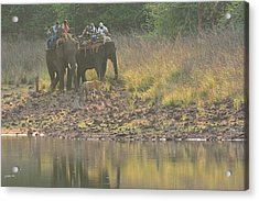 As Close As It Gets Acrylic Print by Fotosas Photography