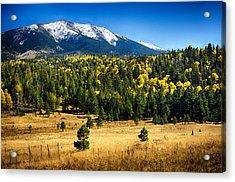 As Fall Arrives In Arizona  Acrylic Print