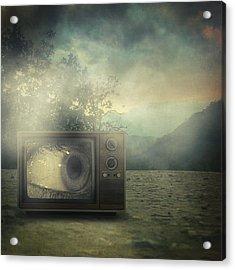 As Seen On Tv Acrylic Print by Taylan Apukovska
