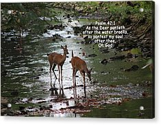 As The Deer Pants For Water Acrylic Print