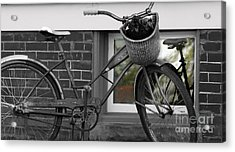 As Time Cycles Past Acrylic Print by Steven Digman