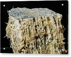 Asbestos Acrylic Print by Millard H. Sharp