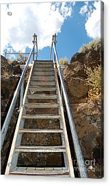 Acrylic Print featuring the photograph Ascending by Debra Thompson