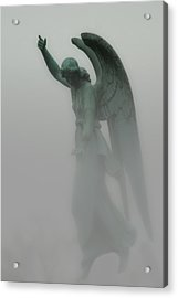 Ascending - Published Work Acrylic Print by Jack Zulli