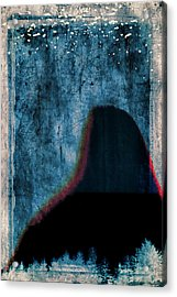 Ascent Acrylic Print by Carol Leigh