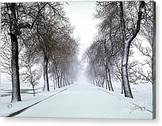 Acrylic Print featuring the photograph Ashlane I by Jessie Parker